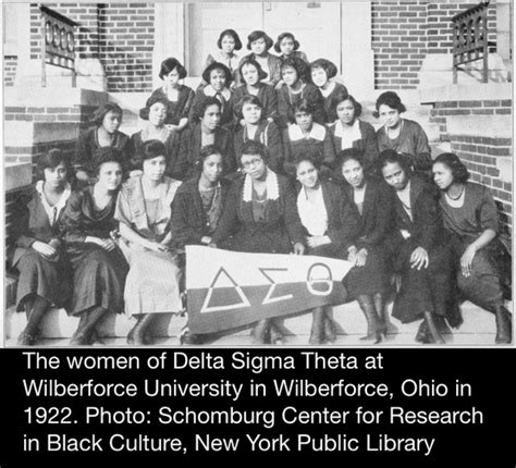 in search of sisterhood delta sigma theta and the challenge of the black sorority movement delta sigma theta 100 years of sisterhood scholarship