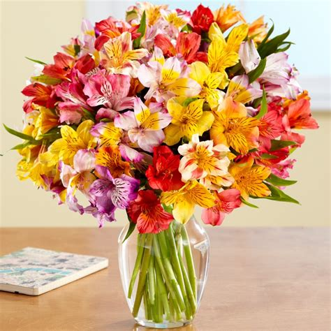 Get Well Flowers by 100 Blooms Of Get Well Wishes