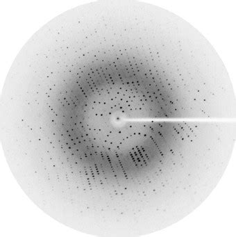 protein x diffraction pattern crystallography experimental diffraction