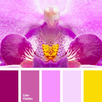 orchid colors color of orchid color palette ideas