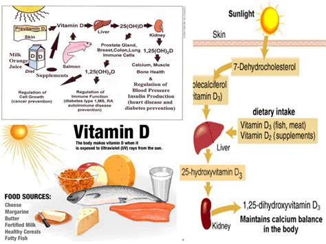 protein z deficiency pregnancy healthy diet for s health and nutrition