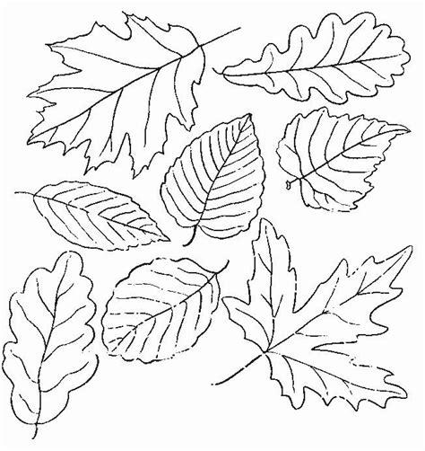 hojas de otono coloring pages menta m 225 s chocolate recursos para educaci 211 n infantil