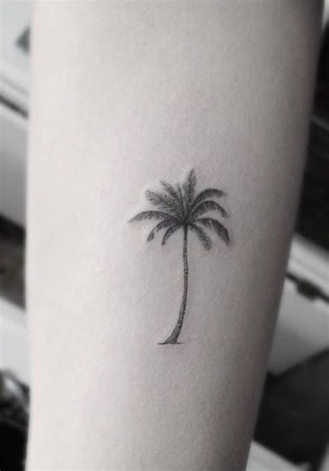 tattoo removal palm beach 1000 ideas about palm tree tattoos on tree