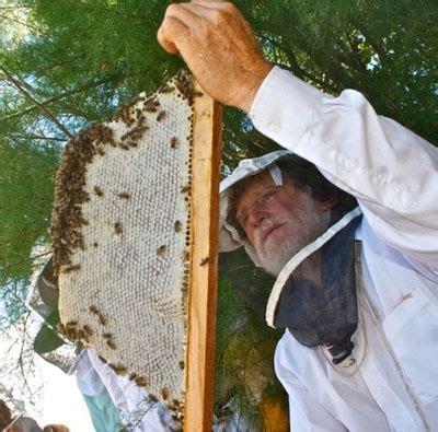 top bar beekeeping les crowder holybeepress com