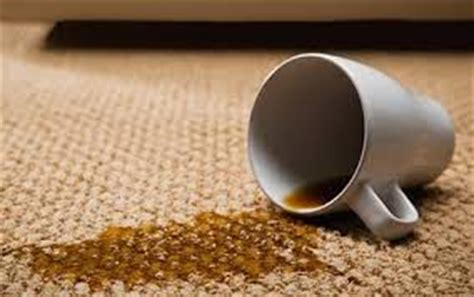 spilled coffee on rug apostles news september 15 2013 vol 9 iss 2 2