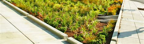 Home Design Box Type Bioretention Rain Gardens Sf Better Streets