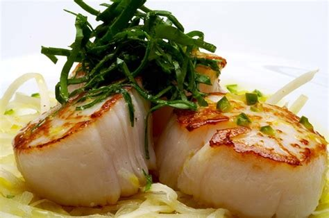 seafood what s the best way to cook scallops quora