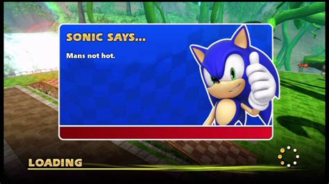 The Says by Sonic Says Mans Not Sonic Says Your Meme