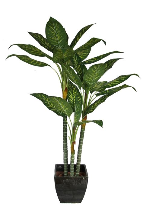 where to put plants in house china artificial dieffenbachia plant imitated houseplant