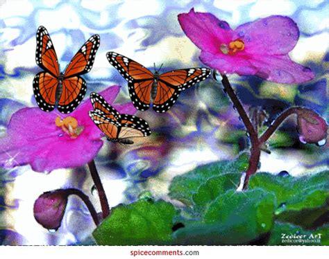 imagenes con movimiento de mariposas mariposas en movimiento gif imagui