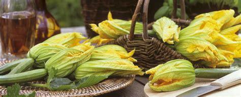 foto fiori di zucca come cucinare i fiori di zucca sale pepe