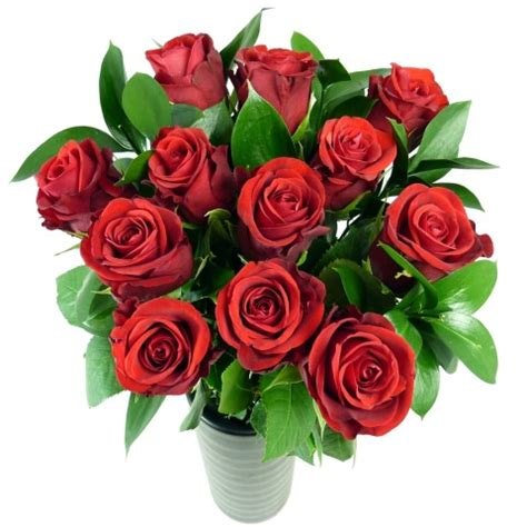 send roses dozen roses free uk delivery post a flowers
