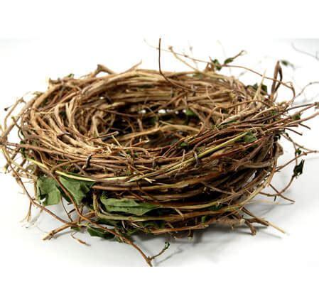 Candle Holder Vase Centerpiece Honeysuckle 10 Quot Bird Nest Wreath