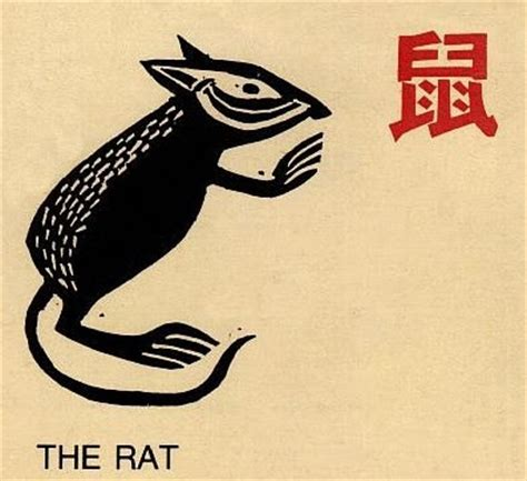 new year what does rat really my new year the year of the earth rat