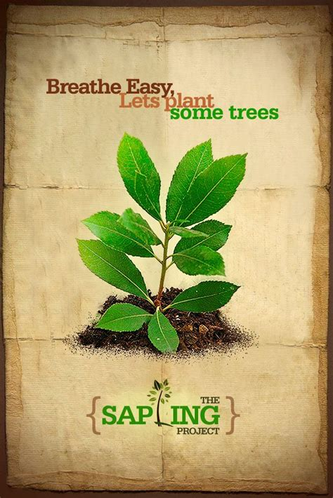Plant Trees Save Earth Essay by Essay On Save Trees Save Environment Logo
