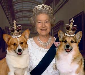 elizabeth corgis queen elizabeth and her corgis all hail the queen pinterest the throne england uk and england