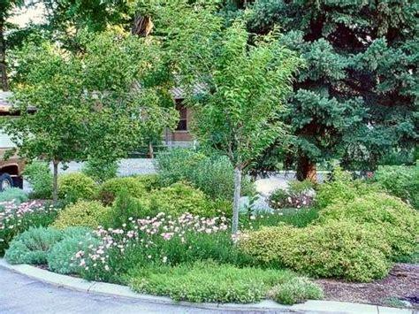 landscaping front yard landscaping ideas utah