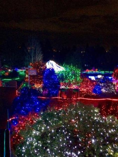 Zoo Lights Picture Of Point Defiance Zoo Aquarium Pdza Zoo Lights