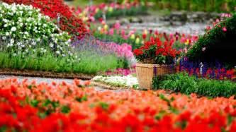 Amazing Flower Garden Amazing Flower Garden Wallpapers 1920x1080 744756