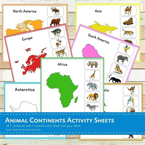 montessori printable continents best 20 continents activities ideas on pinterest