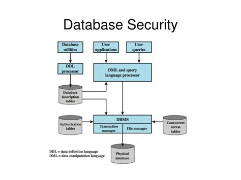 Database Security ppt cs419 2012 computer security powerpoint