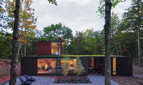 charred cedar helps modern house blend into a forest curbed