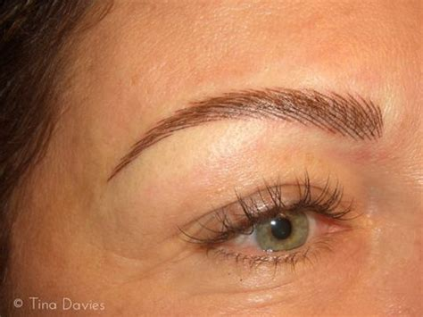 permanent eyebrow tattoo eyebrows free pictures