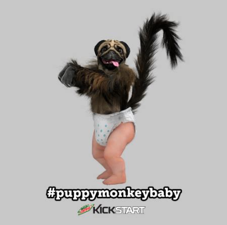 kickstart commercial puppy monkey baby new puppymonkeybaby licensees announced joester loria