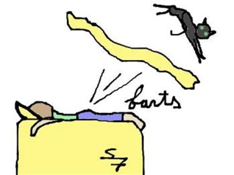 fart in bed farting in bed you don t fart in bed do you mylot
