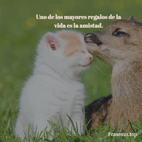 imagenes lindas tumblr en español frases de amistad para tumblr bonitas frases10 top