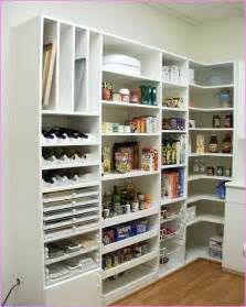 kitchen pantry shelving home design ideas