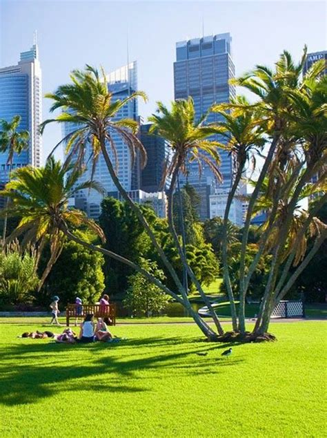Garden Rocks Sydney Top 10 Places To Visit In Sydney An International Student Guide The Story