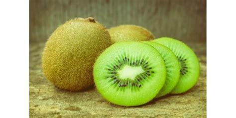 alimenti sciogli grassi guida agli alimenti brucia grassi 2 wellme it