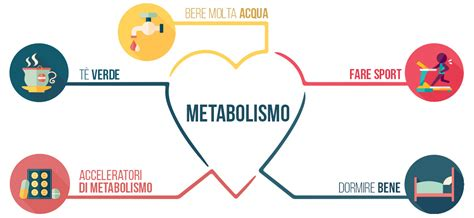 alimenti per attivare il metabolismo acceleratori di metabolismo dimagranti naturali