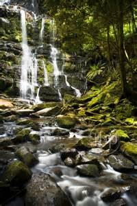 Gordon wild rivers national park tasmania australia stock photo