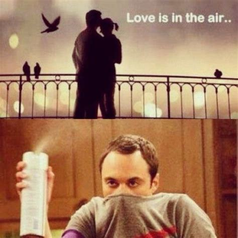 love is in the air sheldon memes