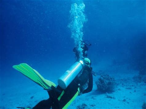 dive tanks scuba diving tank dive for certified divers 1 day