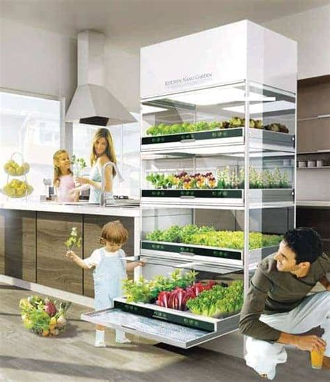 indoor gardening ideas  grow food  family food