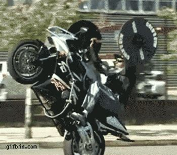 bench press wheelie bike wheelie bench pressing gifs find share on giphy