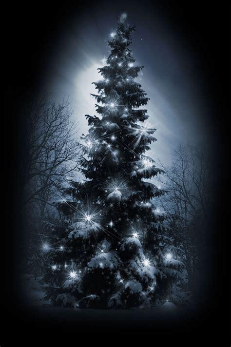 Imagenes Navidad Terror | historias de terror noche de navidad