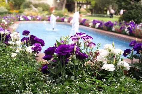 Sherman Library And Gardens by Sherman Library And Gardens