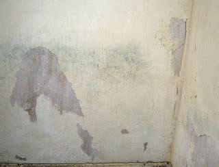a1 free texture and photos free wall paint photos high a1 free texture and photos free wall paint peeling