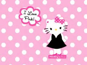 kitty kitty wallpaper 181291 fanpop