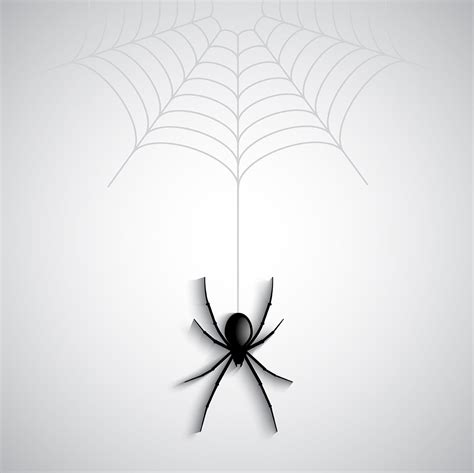 halloween spider  vector art   downloads