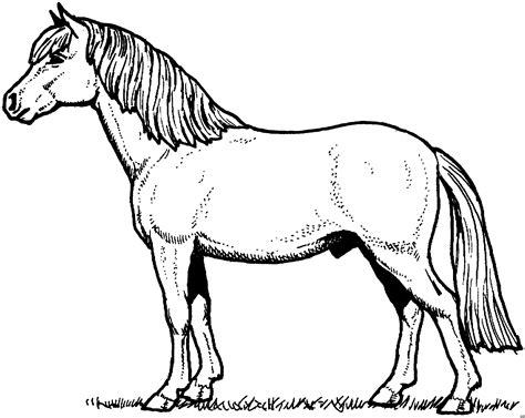 gratis malvorlagen tiere zum ausdrucken frankieisme
