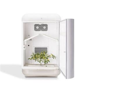 How To Grow Herbs Indoors grow plants indoors using a machine the size of a mini