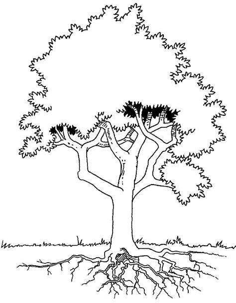 Canalred Gt Plantillas Para Colorear De Arboles Dibujos O Tree Coloring Page