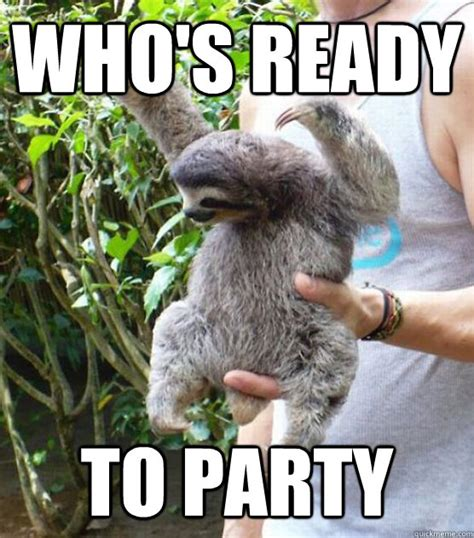 Funny Sloths Memes - sloths with captions memes