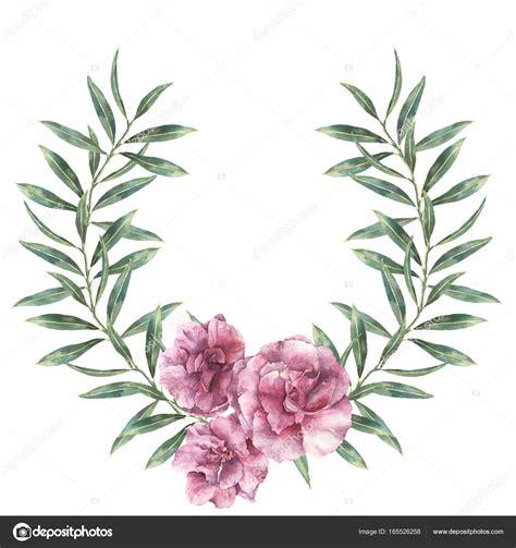 fiori di oleandro bordo floreale dell acquerello ghirlanda con fiori di