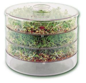 vitamines en minerales de tuinen overzicht hoelang zaden bonen moeten kiemen raw food
